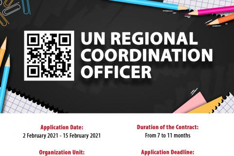 Call for Consultancy: UN Regional Coordination Officer